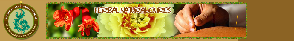 Herbal Natural Cures, Lucid Ganoderma, Royal Jelly, Bee Pollen,Ge Defying Cream